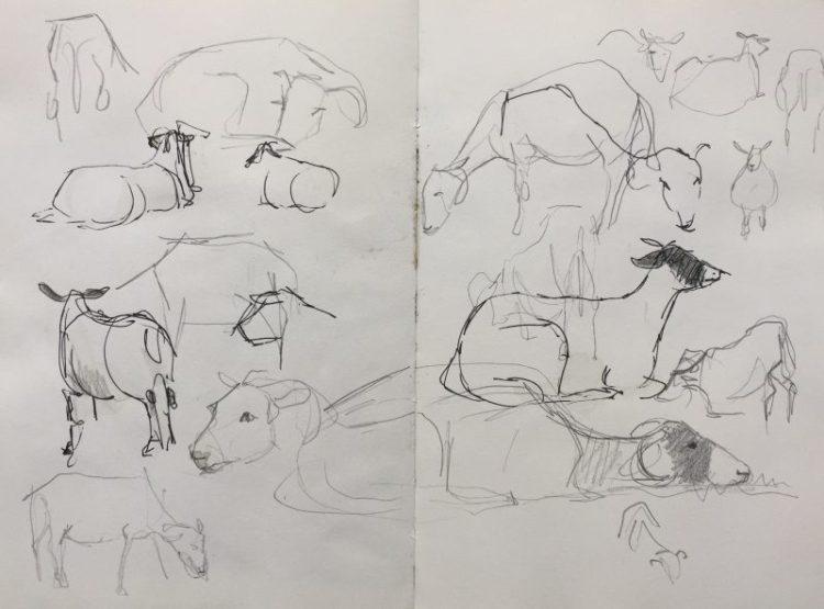 Moorland Roadside Sheep - Peak district sketch by Sian Hughes Art