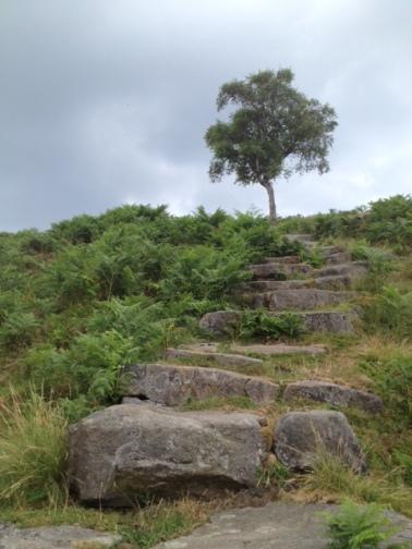 Stairway to Duke's Seat