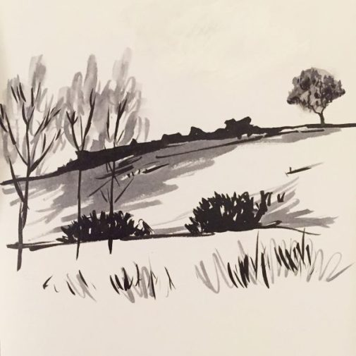 Duke's Seat, Longshaw. Original drawing by Sian Hughes
