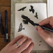 Crows in flight, original drawing by Sian Hughes