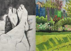 Summer in my Sheffield garden - original sketch by Sian Hughes