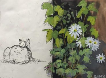 Summer flowers and cat in my garden - sketch by Sian Hughes