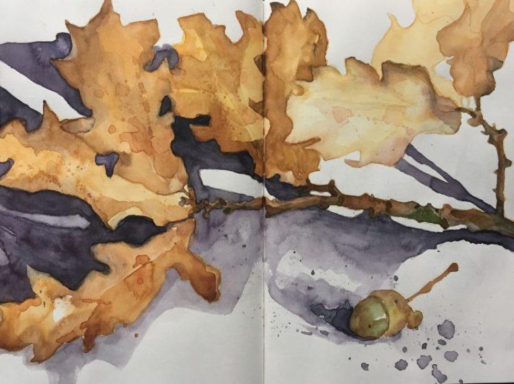 Autumn oak leaves watercolour sketch by Sheffield artist Sian Hughes
