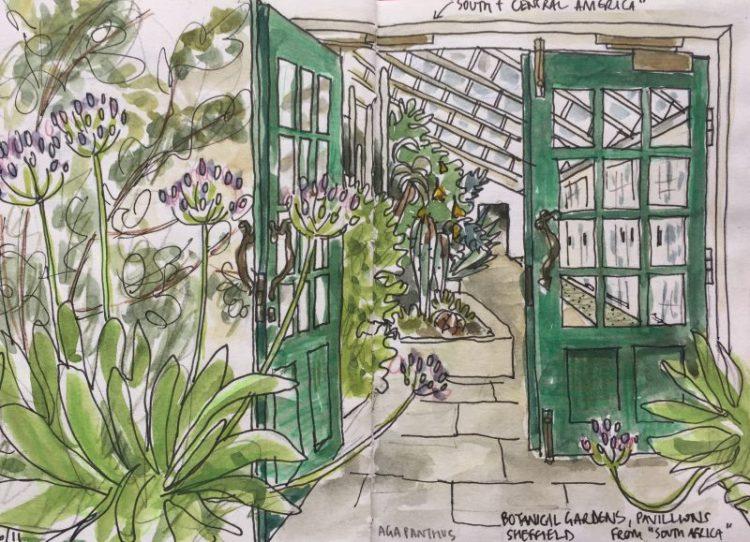 Sheffield Botanical Gardens, inside the pavilions - sketch by Sian Hughes artist