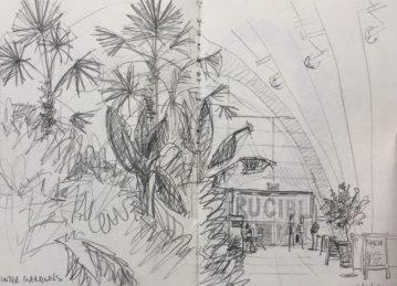 Inside the Winter Gardens Sheffield - urban sketch by Sian Hughes art