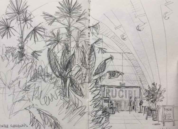 Inside the Winter Gardens Sheffield - urban sketch by Sian Hughes art