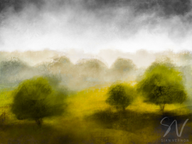 Countryside near Driffield, East Yorkshire - digital sketch by Sheffield artist Sian Vernon