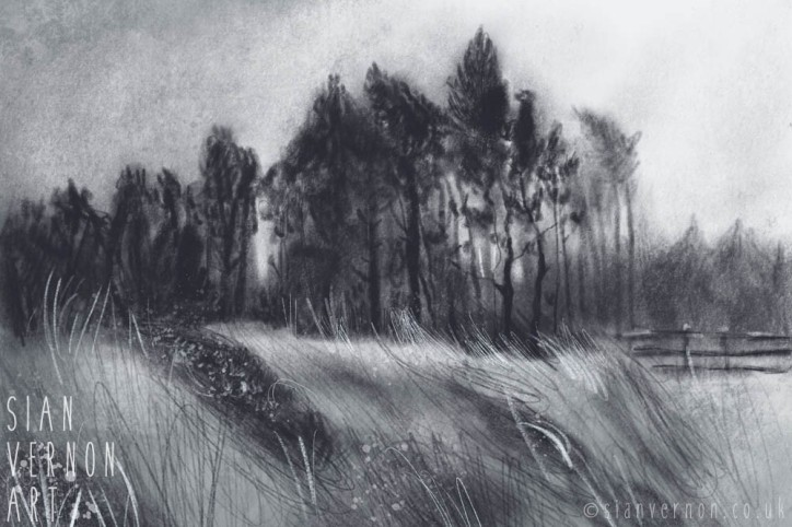Lady Canning's Plantation, Ringinglow - art by Sian Vernon