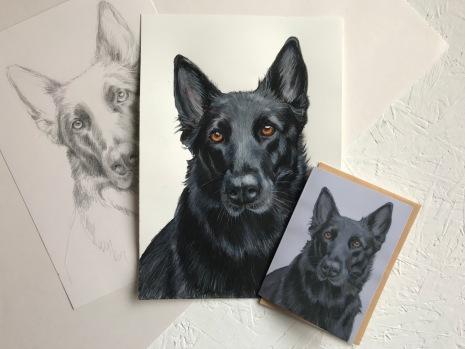 Commission a pet portrait by Sian Vernon Art