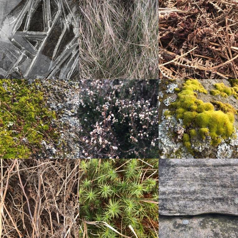 Winter moorland textures, Higger Tor, Peak District