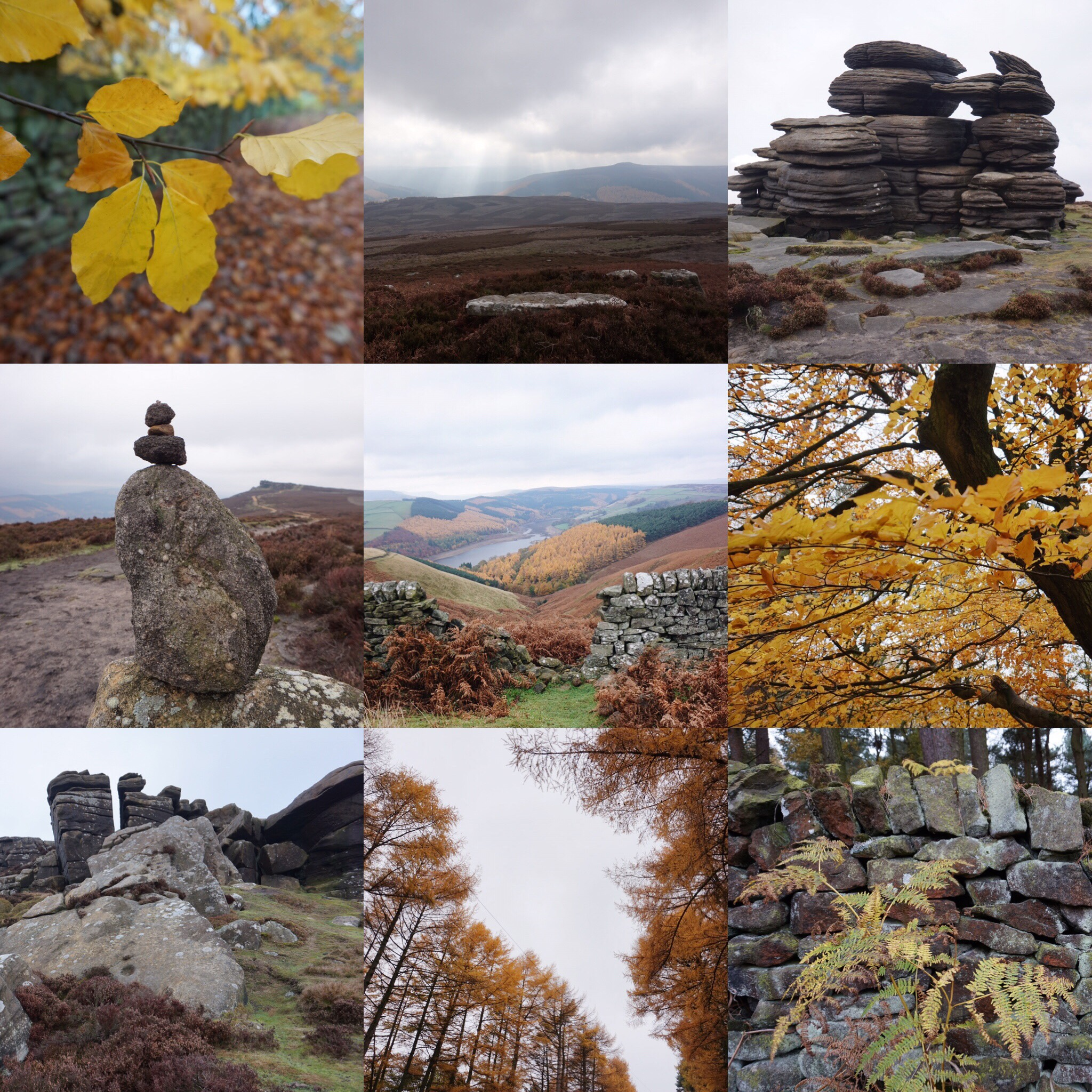 Autumn at the Upper Derwent Valley towards Derwent Edge