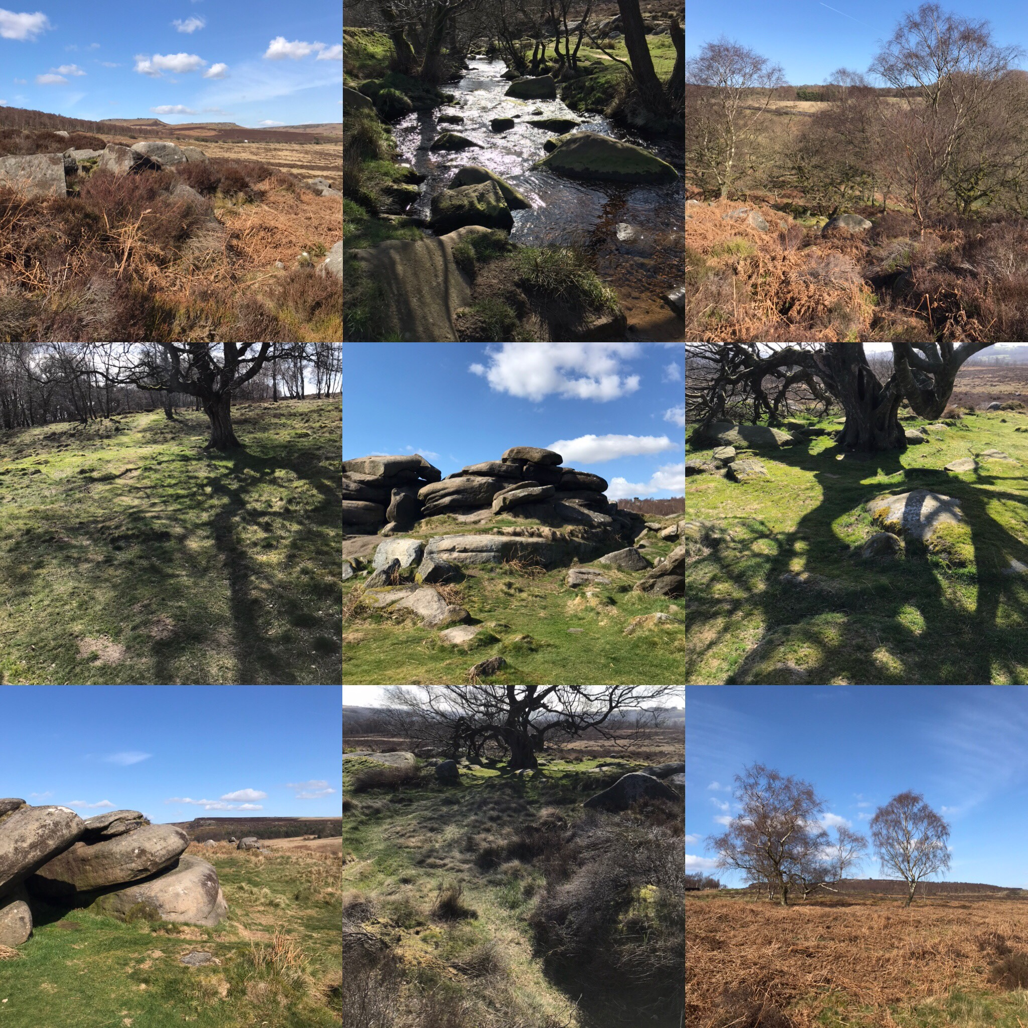 Lonshaw estate and owelr tor photos
