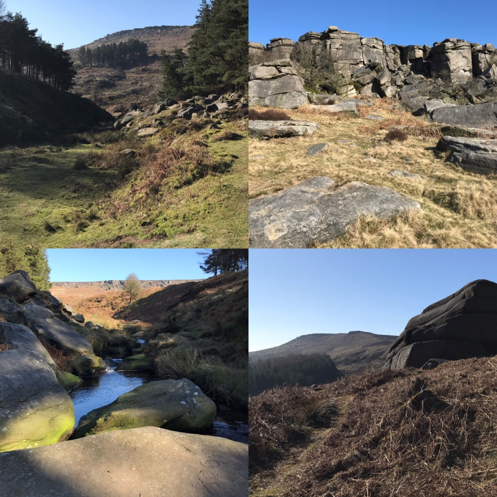 Photos of Burbage from Burbage valley and plantation