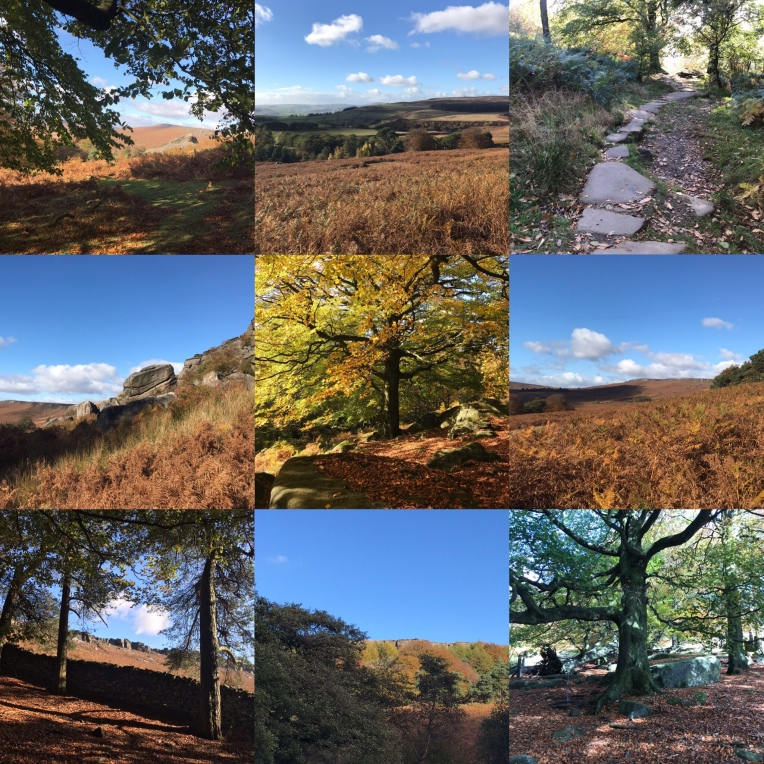 Autumn colours at Stanage Plantation, Peak District landscapes